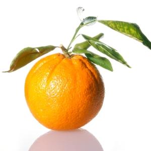 Warna-Orange-pada-Web-Desain-dan-Grafis-10-warna-yang-mempengaruhi-sales-dan-marketing