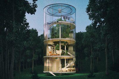 """Aibek Almassov's """"Tree in the House"""""""